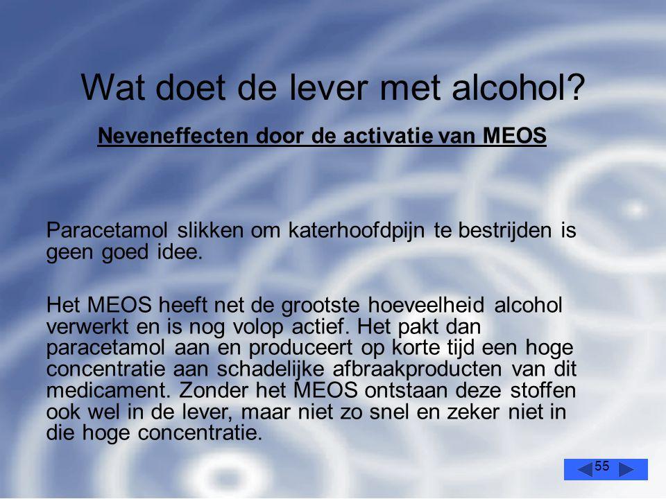 55 Wat doet de lever met alcohol.