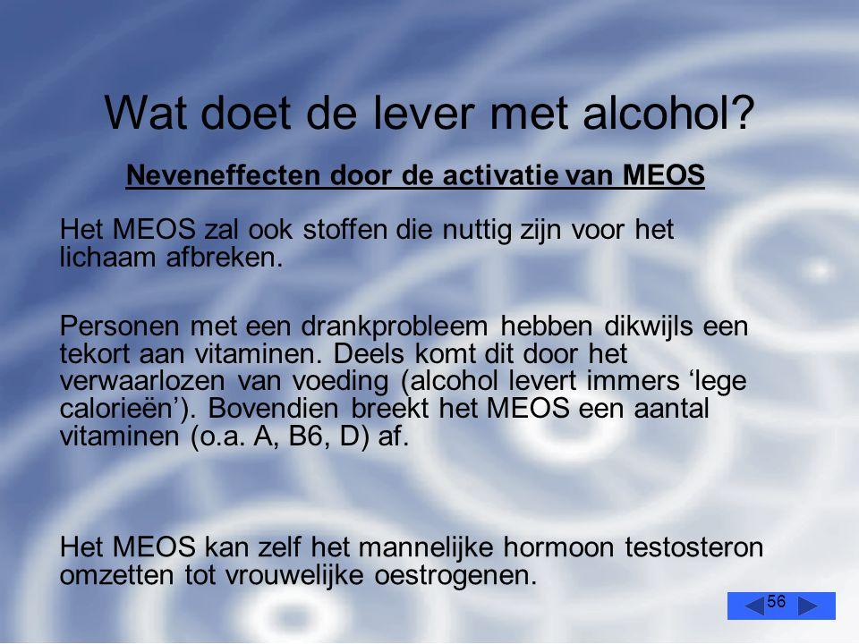 56 Wat doet de lever met alcohol.