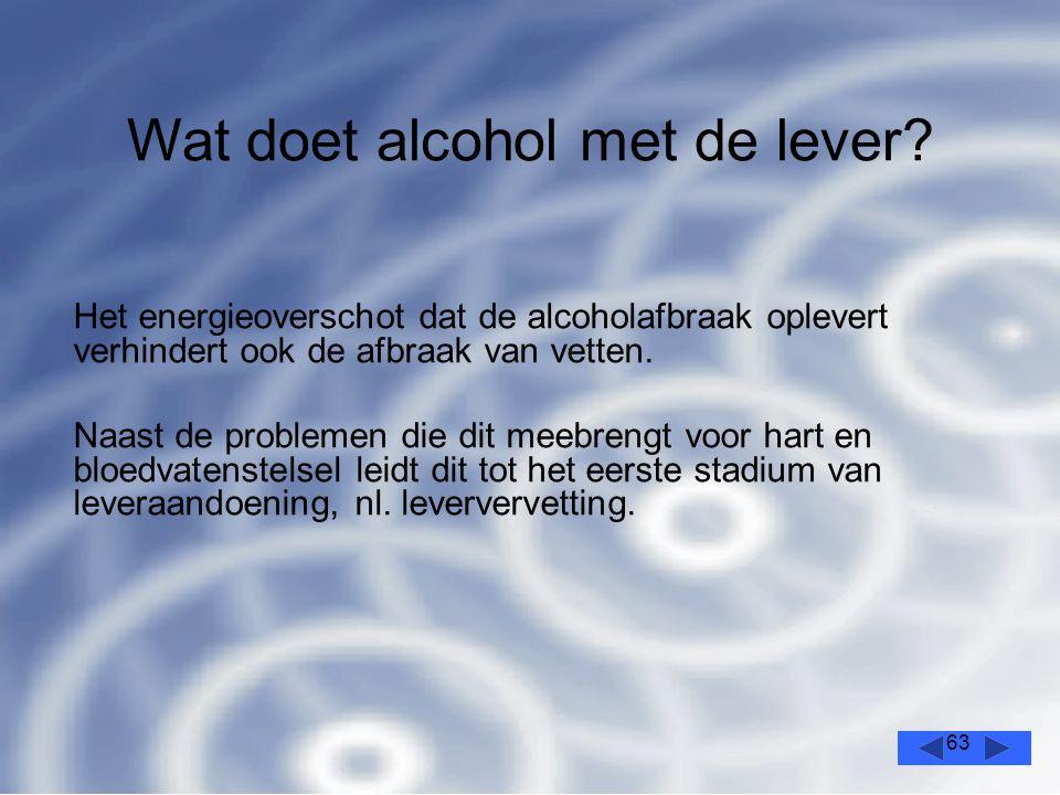 63 Het energieoverschot dat de alcoholafbraak oplevert verhindert ook de afbraak van vetten.