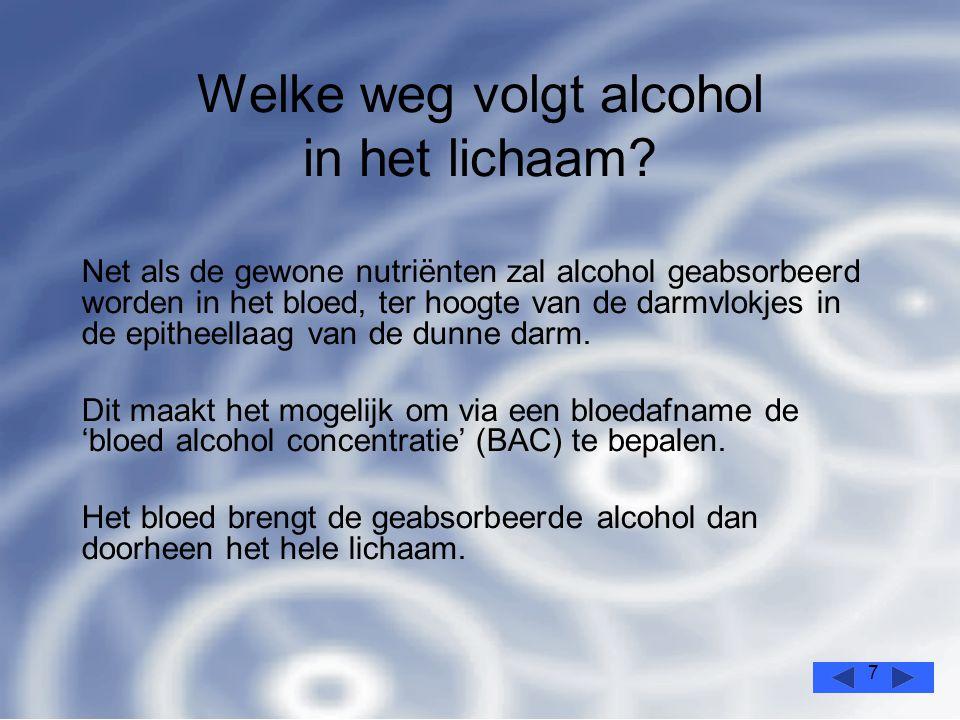 7 Welke weg volgt alcohol in het lichaam.