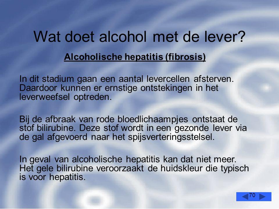 70 Wat doet alcohol met de lever.