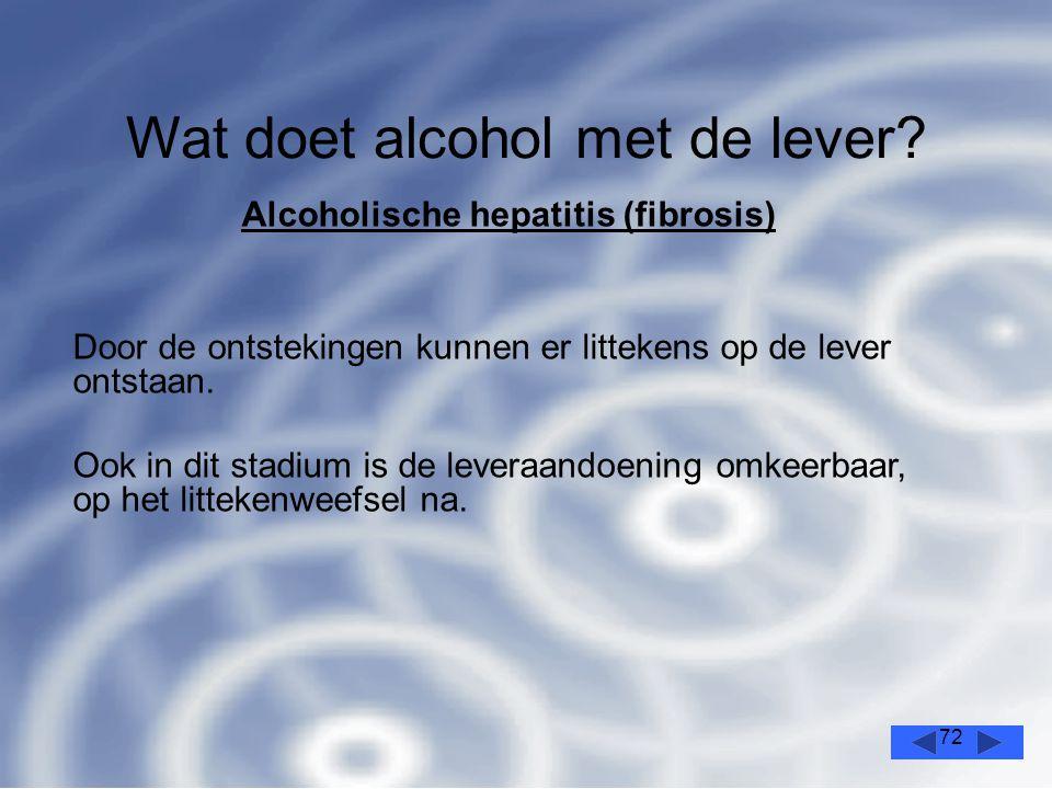 72 Wat doet alcohol met de lever.