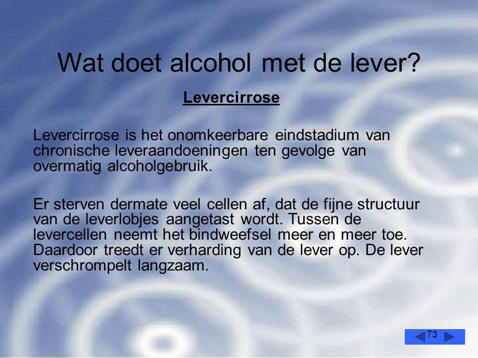 73 Wat doet alcohol met de lever.