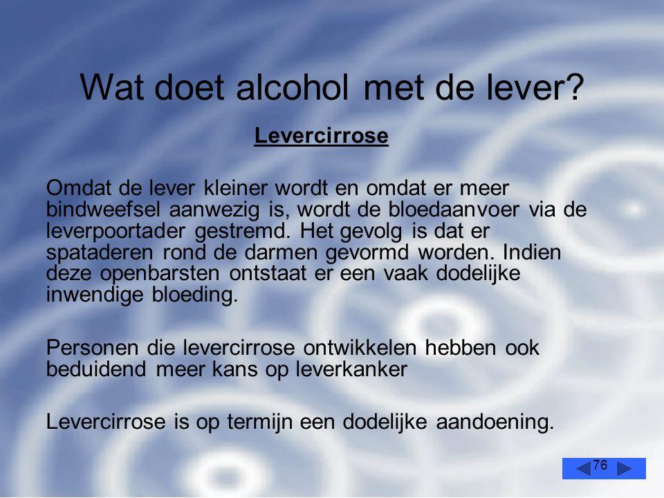 76 Wat doet alcohol met de lever.