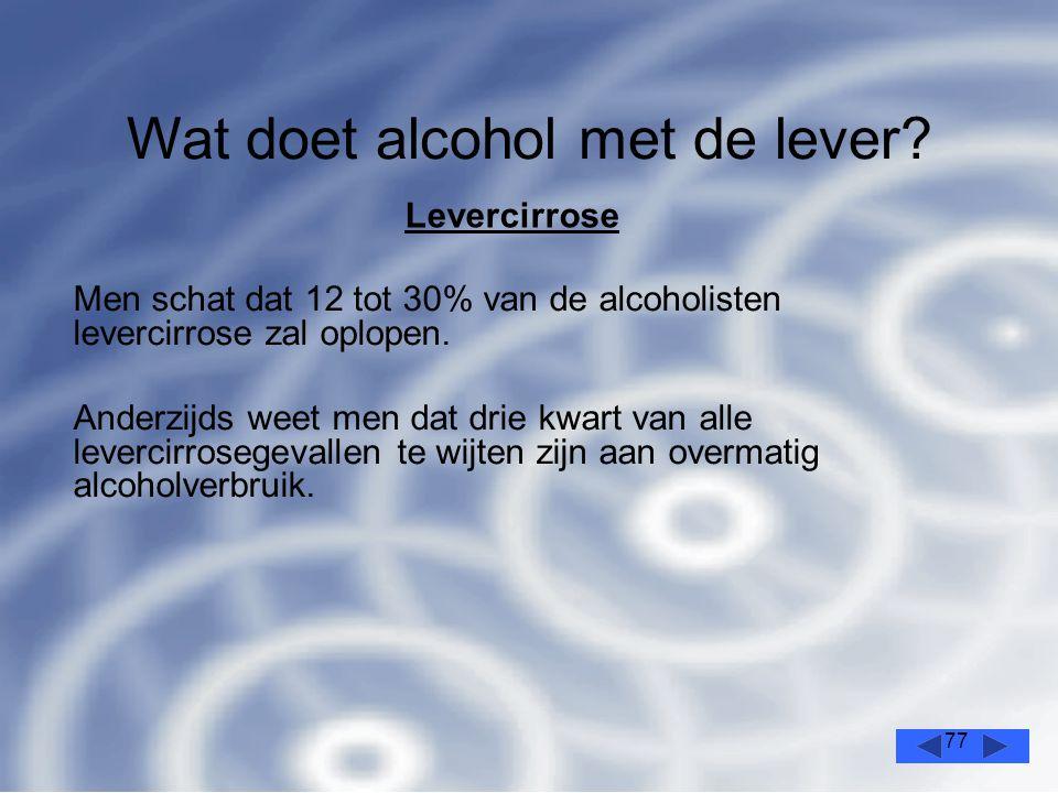 77 Wat doet alcohol met de lever.