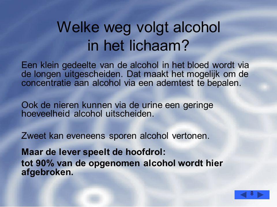 8 Welke weg volgt alcohol in het lichaam.