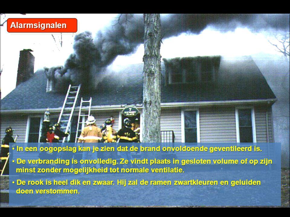 AlarmsignalenAlarmsignalen • In een oogopslag kan je zien dat de brand onvoldoende geventileerd is.