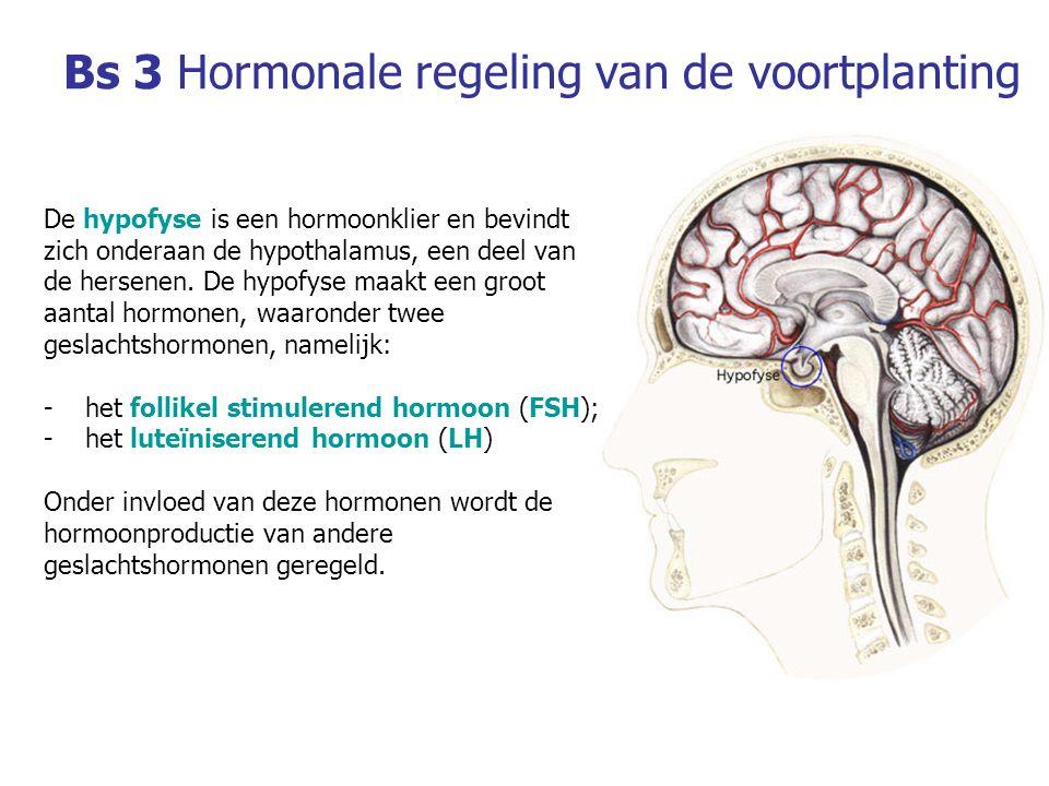 Bs 3Hormonale regeling van de voortplanting De hypofyse is een hormoonklier en bevindt zich onderaan de hypothalamus, een deel van de hersenen.
