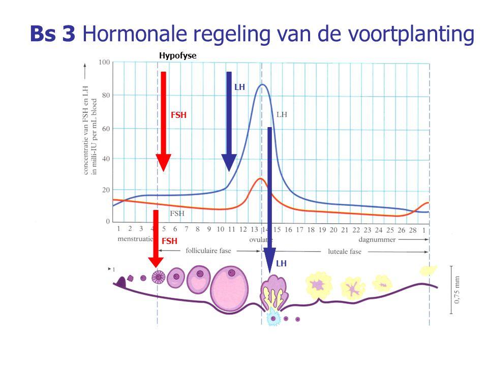 Bs 7Embryonale ontwikkeling Placenta Bloedruimte Navelstreng Slagader van moeder Ader van moeder Moederlijk deel Placenta Foetal deel van placenta Navelstrengader Navelstrengslagader Navelstreng Baarmoeder Chorionvlokken met haarvaten