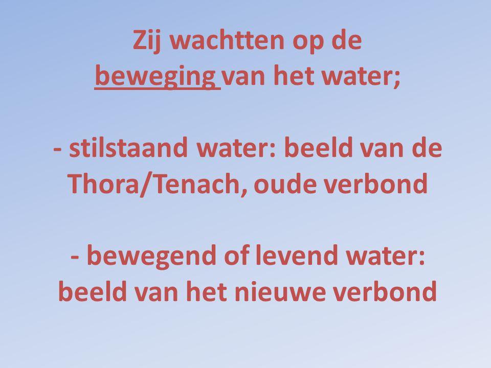 Zij wachtten op de beweging van het water; - stilstaand water: beeld van de Thora/Tenach, oude verbond - bewegend of levend water: beeld van het nieuw