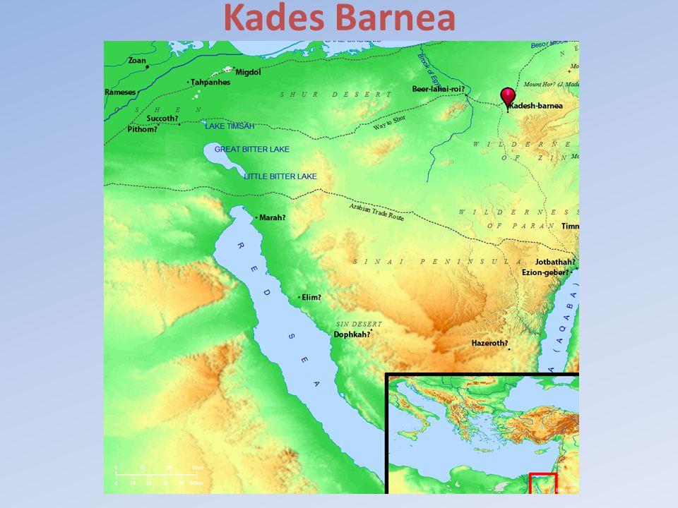 Kades Barnea