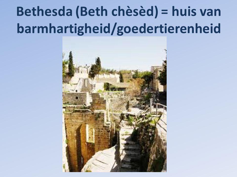 5 zuilengangen rond het badwater: beeld van de Thora, 5 boeken / Mozes