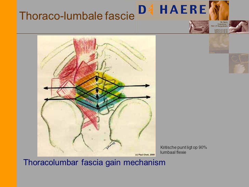 Thoraco-lumbale fascie Thoracolumbar fascia gain mechanism Kritische punt ligt op 90% lumbaal flexie