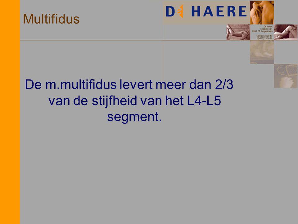 Multifidus De m.multifidus levert meer dan 2/3 van de stijfheid van het L4-L5 segment.