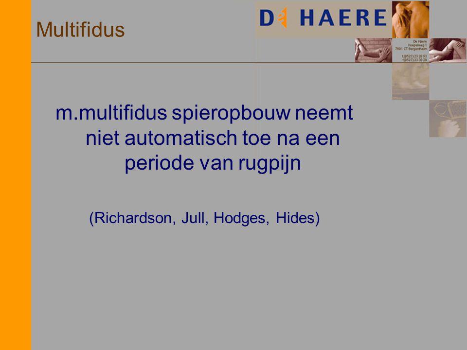 Multifidus m.multifidus spieropbouw neemt niet automatisch toe na een periode van rugpijn (Richardson, Jull, Hodges, Hides)