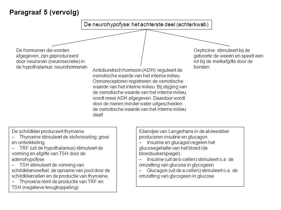 De neurohypofyse: het achterste deel (achterkwab) Paragraaf 5 (vervolg) De hormonen die worden afgegeven, zijn geproduceerd door neuronen (neurosecret
