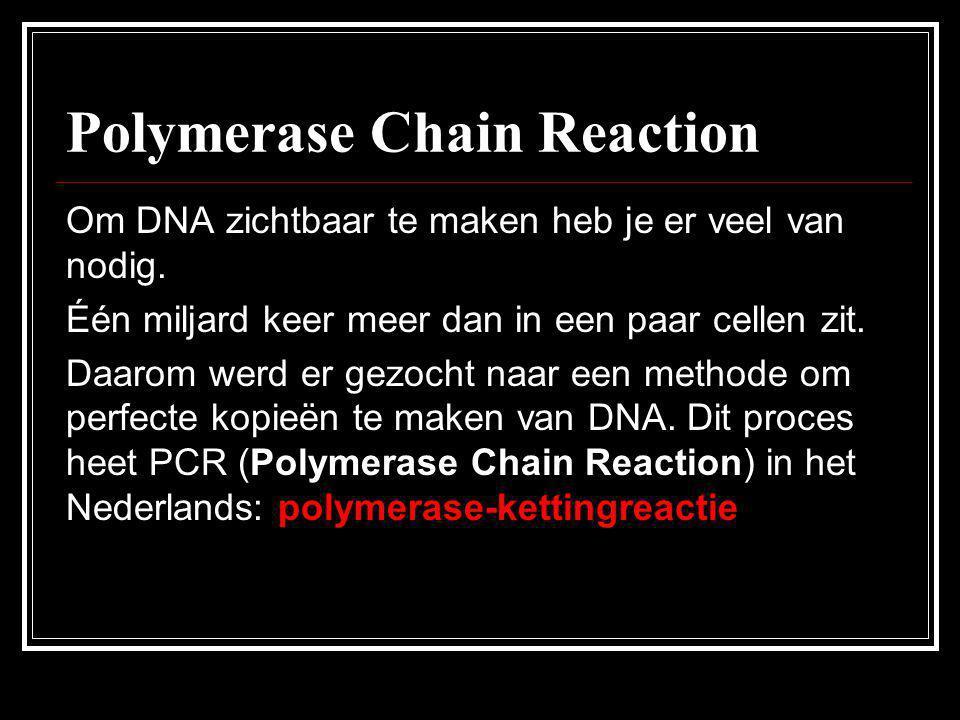 Polymerase Chain Reaction Om DNA zichtbaar te maken heb je er veel van nodig. Één miljard keer meer dan in een paar cellen zit. Daarom werd er gezocht