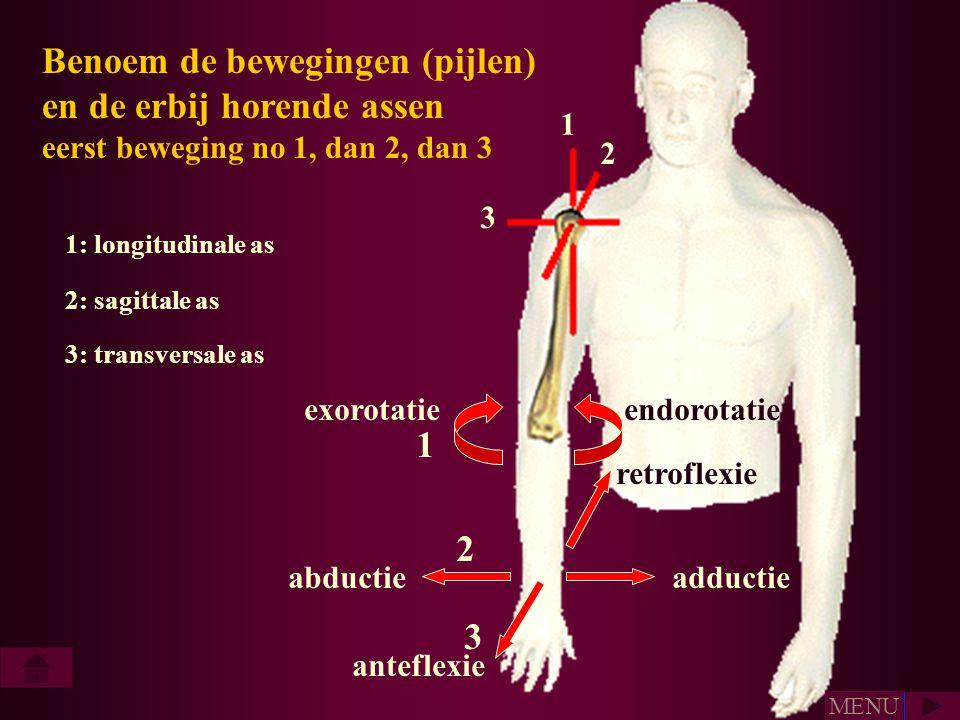 Benoem de bewegingen (pijlen) en de erbij horende assen eerst beweging no 1, dan 2, dan 3 1 2 3 abductieadductie retroflexie anteflexie exorotatie end