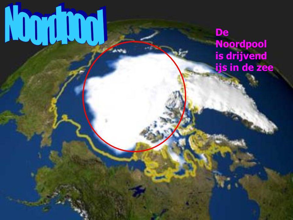 De Noordpool is drijvend ijs in de zee