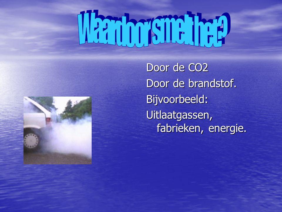Door de CO2 Door de brandstof. Bijvoorbeeld: Uitlaatgassen, fabrieken, energie.