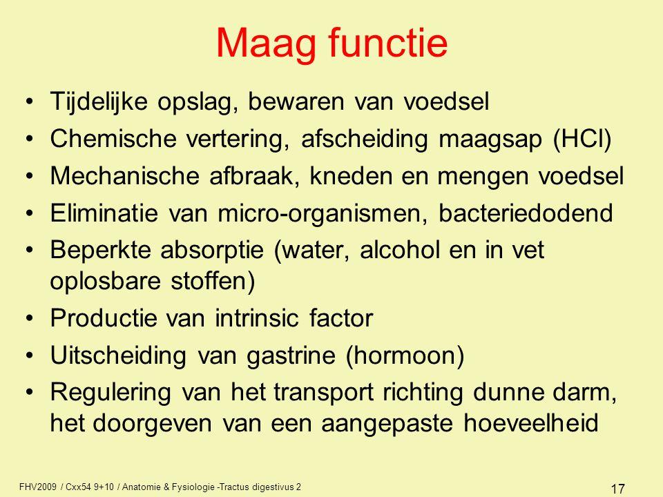 FHV2009 / Cxx54 9+10 / Anatomie & Fysiologie -Tractus digestivus 2 17 Maag functie •Tijdelijke opslag, bewaren van voedsel •Chemische vertering, afsch