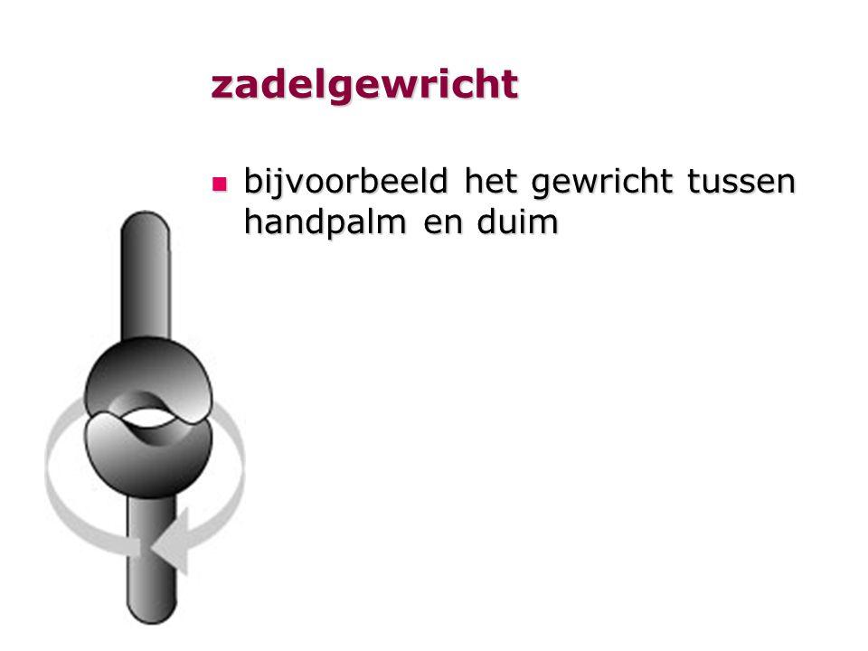 zadelgewricht  bijvoorbeeld het gewricht tussen handpalm en duim