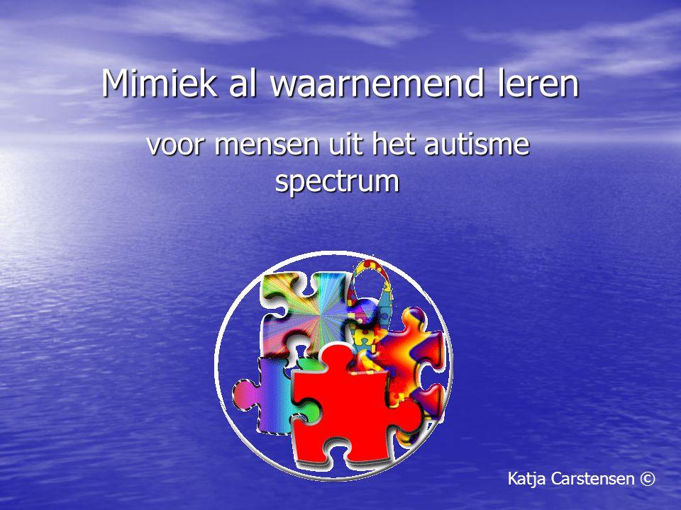Mimiek al waarnemend leren voor mensen uit het autisme spectrum Katja Carstensen ©