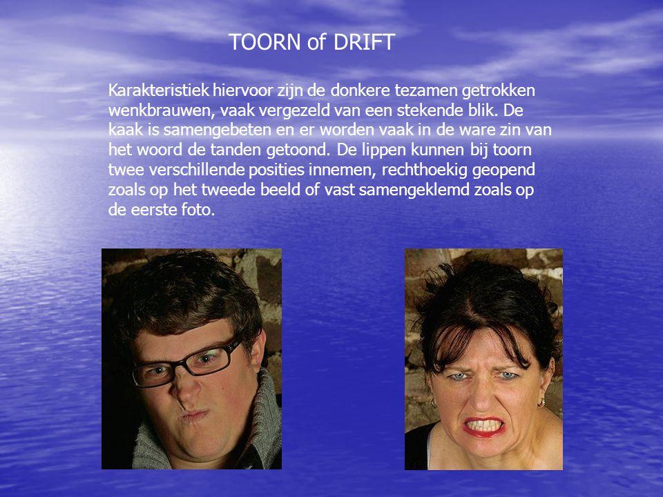 TOORN of DRIFT Karakteristiek hiervoor zijn de donkere tezamen getrokken wenkbrauwen, vaak vergezeld van een stekende blik. De kaak is samengebeten en