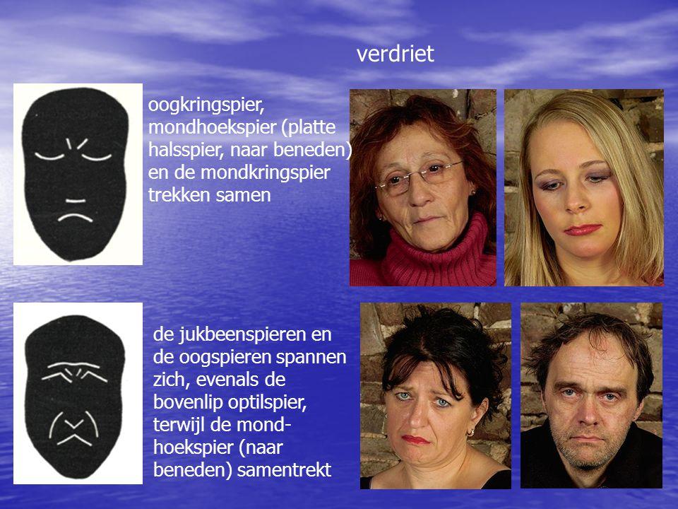 verdriet oogkringspier, mondhoekspier (platte halsspier, naar beneden) en de mondkringspier trekken samen de jukbeenspieren en de oogspieren spannen z