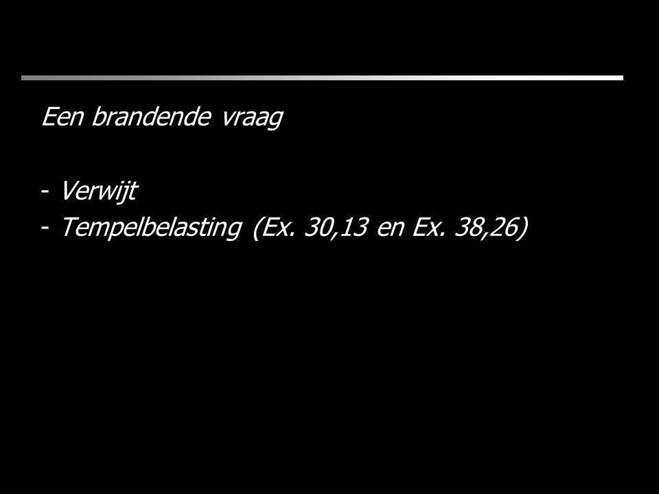 Een brandende vraag - Verwijt - Tempelbelasting (Ex. 30,13 en Ex. 38,26)
