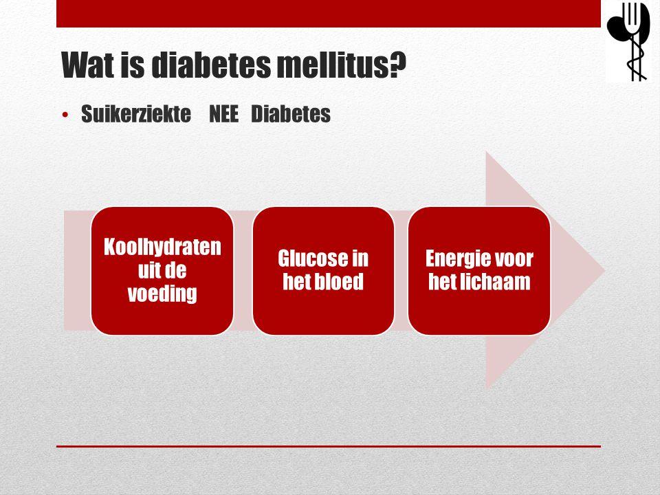 Wat is diabetes mellitus? • Suikerziekte NEE Diabetes Koolhydraten uit de voeding Glucose in het bloed Energie voor het lichaam