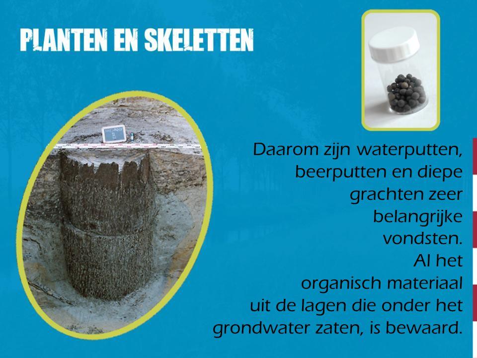 Daarom zijn waterputten, beerputten en diepe grachten zeer belangrijke vondsten. Al het organisch materiaal uit de lagen die onder het grondwater zate