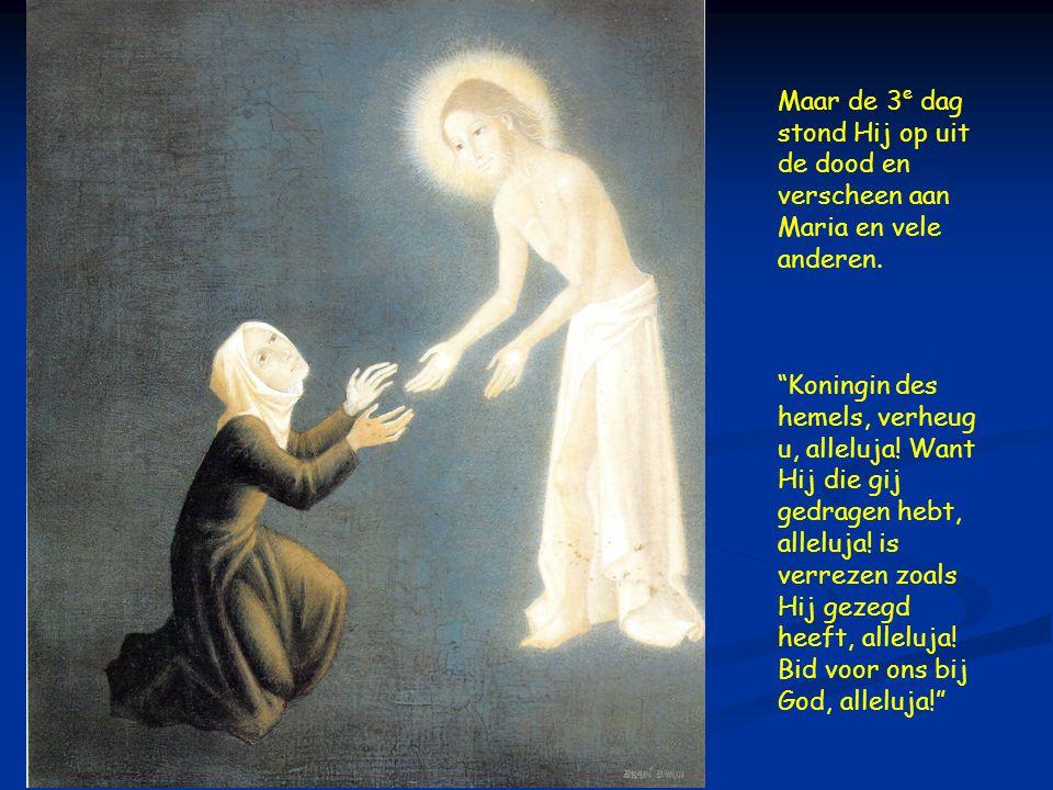  Maar de 3 e dag stond Hij op uit de dood en verscheen aan Maria en vele anderen.