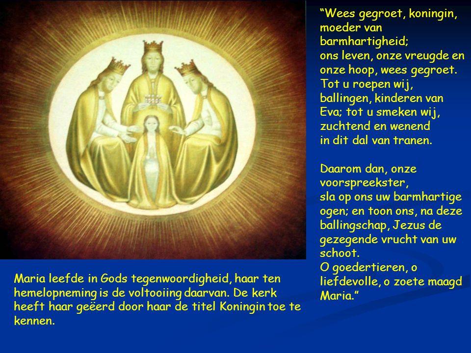 Pastores  Maria leefde in Gods tegenwoordigheid, haar ten hemelopneming is de voltooiing daarvan.