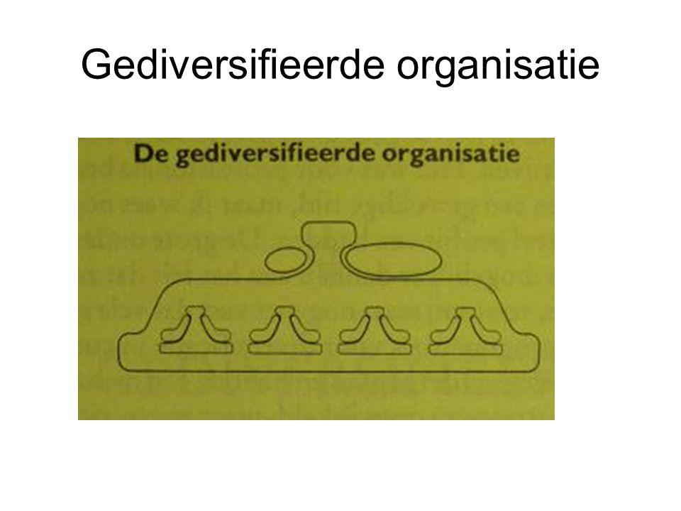 Gediversifieerde organisatie