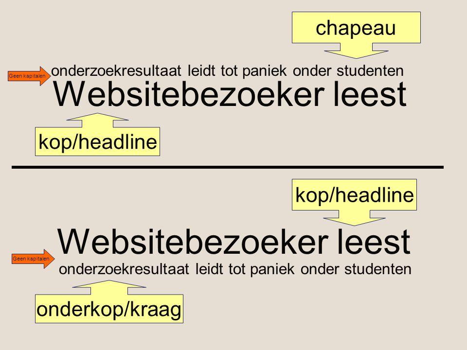 Websitebezoeker leest onderzoekresultaat leidt tot paniek onder studenten kop/headline chapeau Websitebezoeker leest kop/headline onderzoekresultaat l