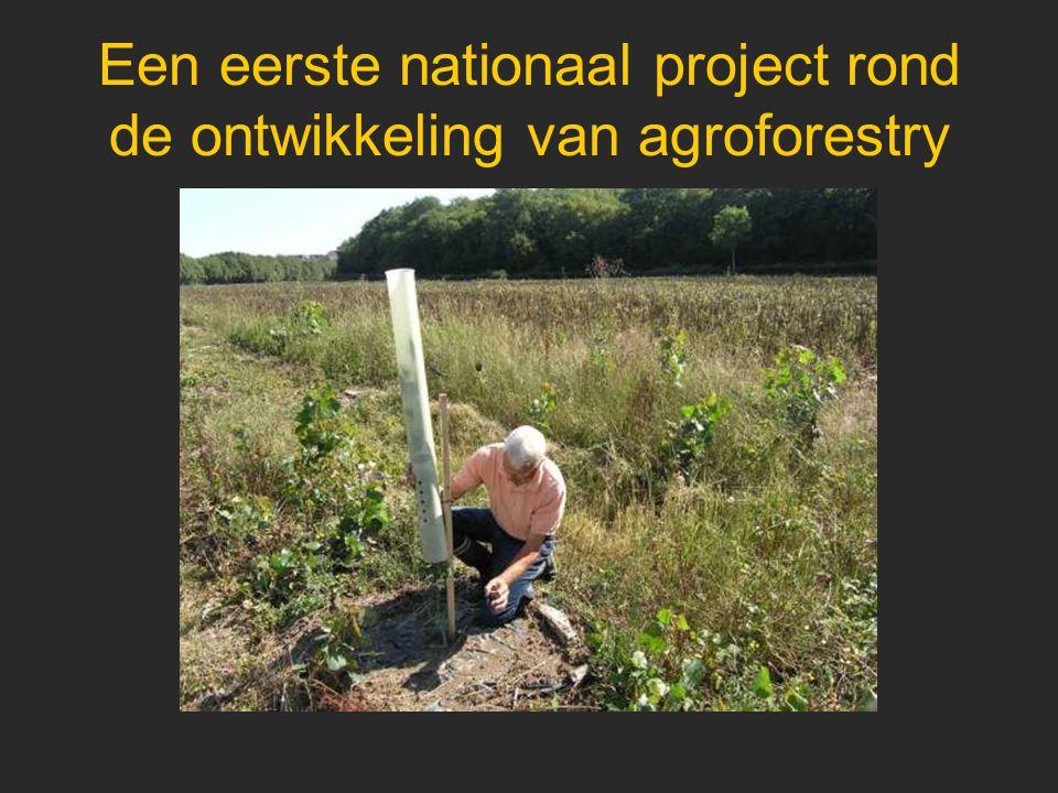 Een eerste nationaal project rond de ontwikkeling van agroforestry