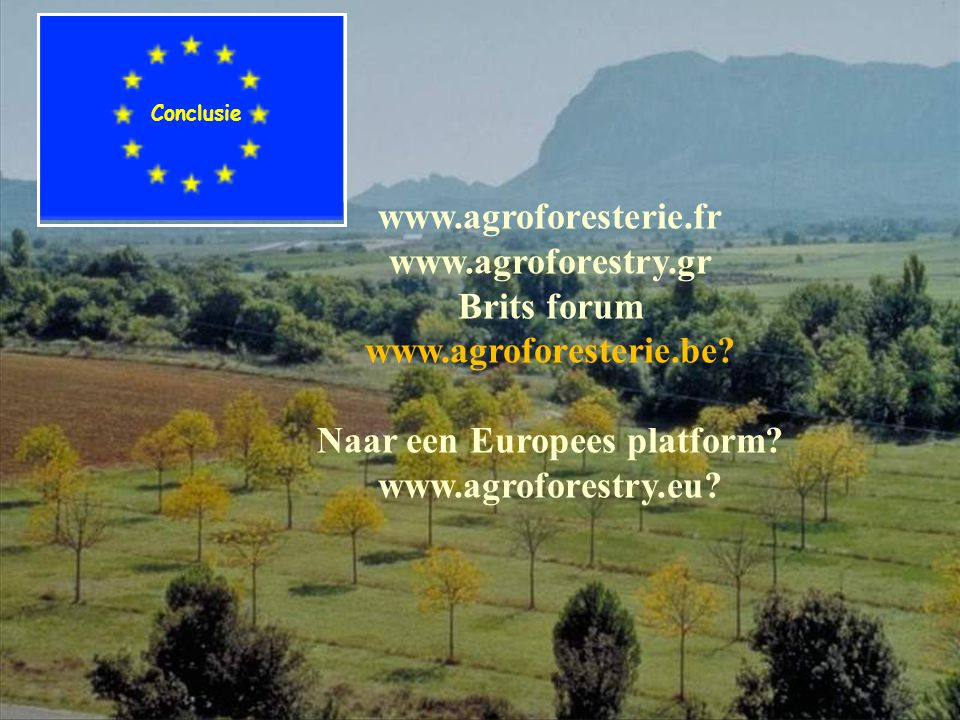 Conclusie www.agroforesterie.fr www.agroforestry.gr Brits forum www.agroforesterie.be? Naar een Europees platform? www.agroforestry.eu?