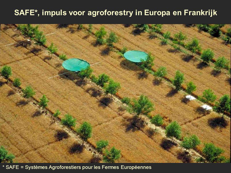 SAFE*, impuls voor agroforestry in Europa en Frankrijk * SAFE = Systèmes Agroforestiers pour les Fermes Européennes