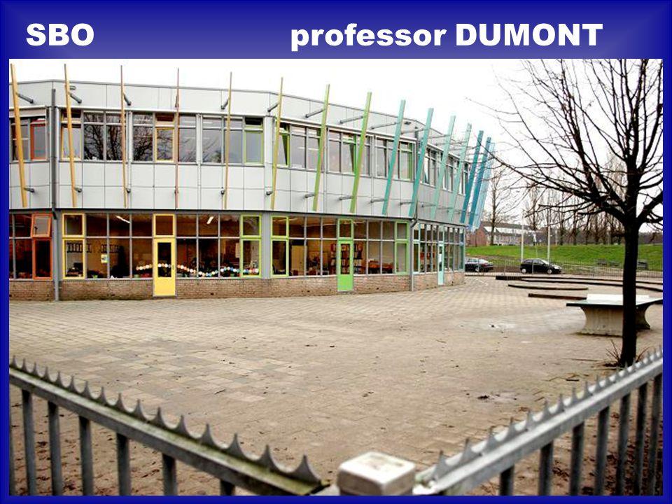 professor DUMONTSBO
