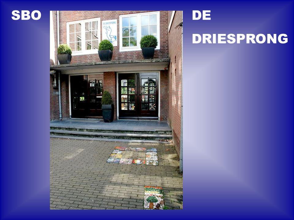 DE DRIESPRONG SBO