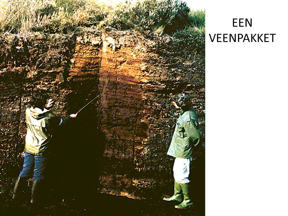 De zeespiegel stijgt steeds verder => In west en noord Nederland worden delen van het veen weggeslagen of bedekt met nieuwe mariene sedimenten.