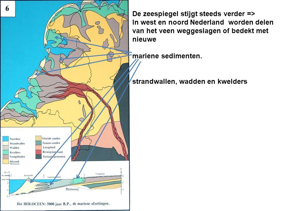 De zeespiegel stijgt steeds verder => In west en noord Nederland worden delen van het veen weggeslagen of bedekt met nieuwe mariene sedimenten. strand