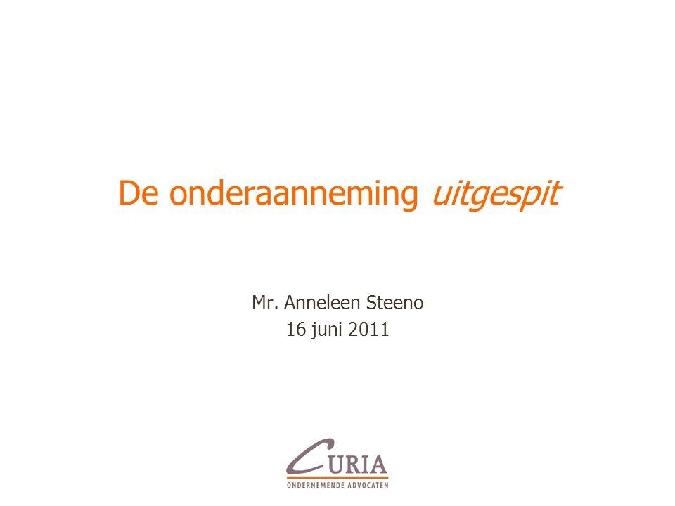 De onderaanneming uitgespit Mr. Anneleen Steeno 16 juni 2011