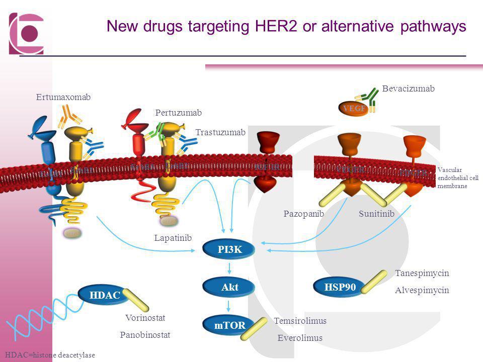 New drugs targeting HER2 or alternative pathways PI3KmTORAkt Trastuzumab ErbB3 ErbB2 ErbB1 ErbB2 Pertuzumab IGF-IR Pazopanib Bevacizumab Ertumaxomab H
