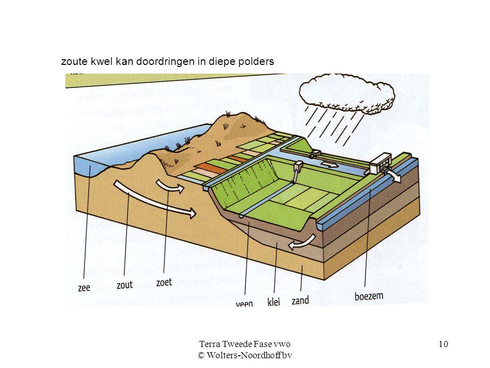 Terra Tweede Fase vwo © Wolters-Noordhoff bv 10 zoute kwel kan doordringen in diepe polders