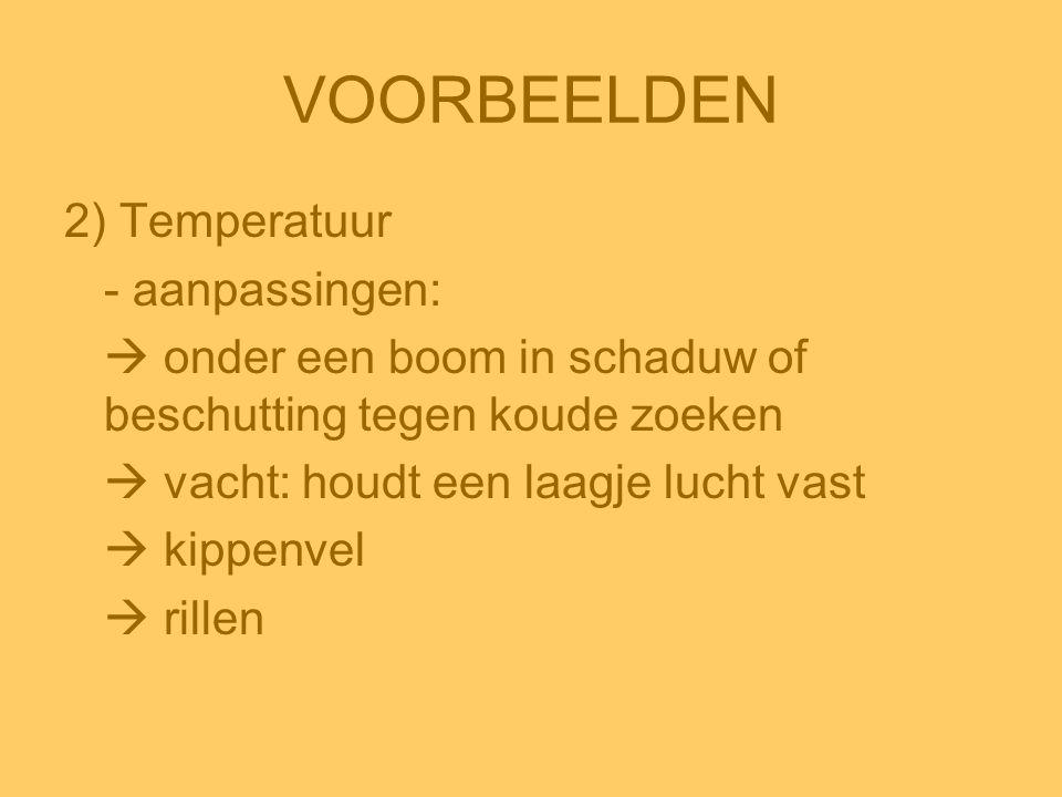 VOORBEELDEN 2) Temperatuur - aanpassingen:  onder een boom in schaduw of beschutting tegen koude zoeken  vacht: houdt een laagje lucht vast  kippen