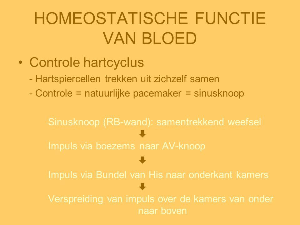 HOMEOSTATISCHE FUNCTIE VAN BLOED •Controle hartcyclus - Hartspiercellen trekken uit zichzelf samen - Controle = natuurlijke pacemaker = sinusknoop Sin