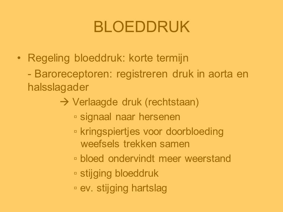BLOEDDRUK •Regeling bloeddruk: korte termijn - Baroreceptoren: registreren druk in aorta en halsslagader  Verlaagde druk (rechtstaan) ▫ signaal naar