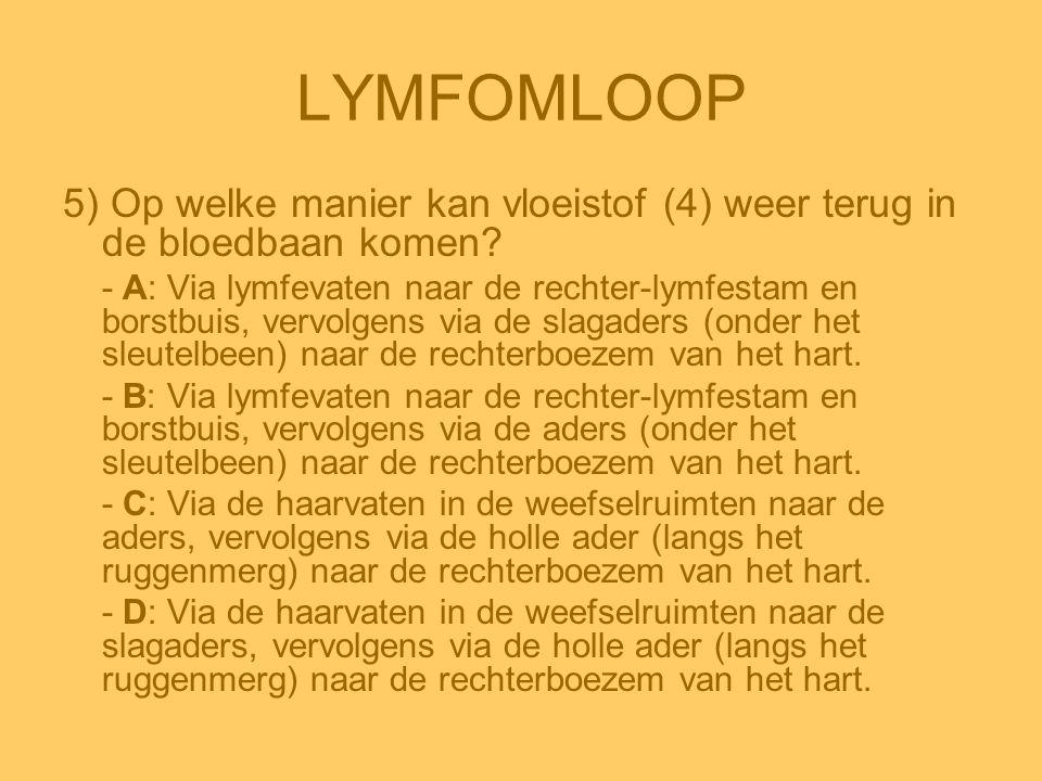 LYMFOMLOOP 5) Op welke manier kan vloeistof (4) weer terug in de bloedbaan komen? - A: Via lymfevaten naar de rechter-lymfestam en borstbuis, vervolge